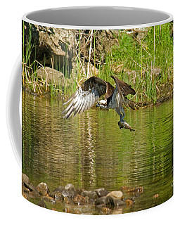 Coffee Mug featuring the photograph One More Fish by Alana Ranney