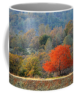 Coffee Mug featuring the photograph One Of A Kind by AJ Schibig