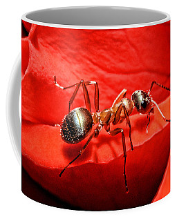Ant Coffee Mugs