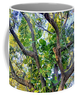 Oneness Discovery Coffee Mug