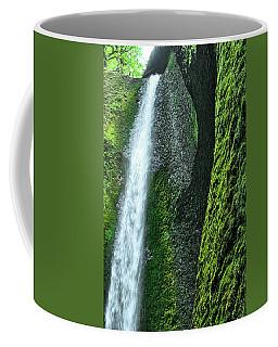 Oneonta Falls  Coffee Mug