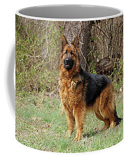 Coffee Mug featuring the photograph Onja by Sandy Keeton