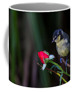 Only A Rose Coffee Mug
