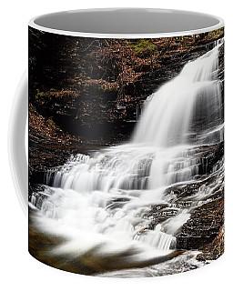 Onondaga Falls Coffee Mug