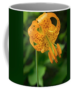 Coffee Mug featuring the photograph Open Tiger Lily by Jean Noren
