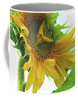 Opening Day - Sunflower - Floral Photography Coffee Mug