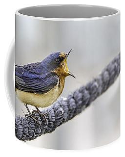 Oprah In The Marsh Coffee Mug