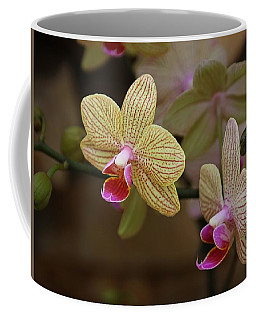 Opulent Orchids Coffee Mug