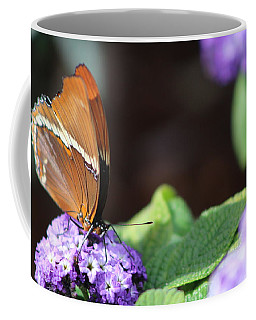 Orange And Brown Butterfly On Purple Coffee Mug