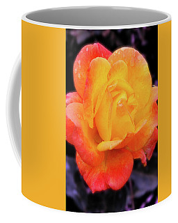 Coffee Mug featuring the photograph Orange And Violet Rose by Howard Bagley