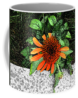 Coffee Mug featuring the photograph Orange At Highline Nyc by Joan  Minchak