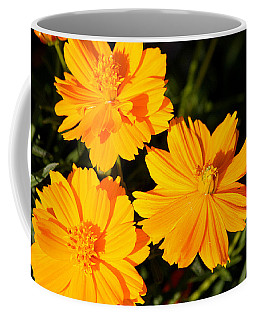 Cosmos Trio Coffee Mug by Sheila Brown