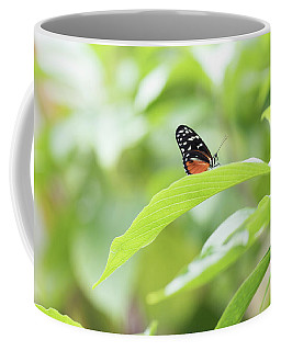 Coffee Mug featuring the photograph Orange Black Butterfly by Raphael Lopez