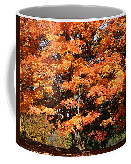 Orange Brilliance Coffee Mug