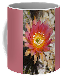 Orange Cactus Flower Coffee Mug