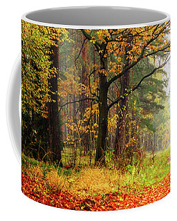 Coffee Mug featuring the photograph Orange Carpet by Dmytro Korol