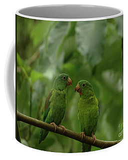 Orange-chinned Parakeets-  Coffee Mug
