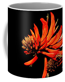 Coffee Mug featuring the photograph Orange Clover II by Stephen Mitchell