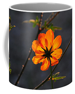 Orange Cosmo Coffee Mug