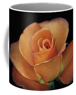 Orange Cream Coffee Mug by Elaine Malott