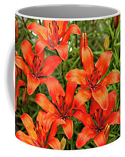 Coffee Mug featuring the photograph Orange Day Lillies by Mary Jo Allen