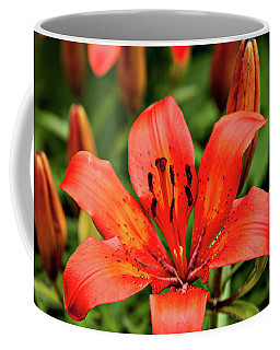 Coffee Mug featuring the photograph Orange Day Lilly Single by Mary Jo Allen