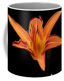 Orange Day-lily Coffee Mug