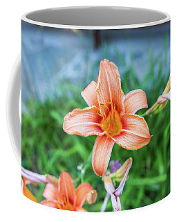 Orange Daylily Coffee Mug