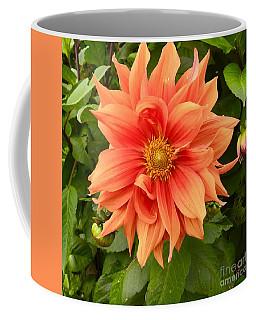 Orange Delight Coffee Mug