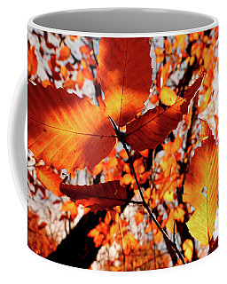 Coffee Mug featuring the photograph Orange Fall Leaves by Meta Gatschenberger