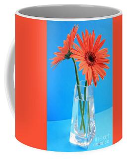 Orange Gerberas In A Vase - Aqua Background Coffee Mug