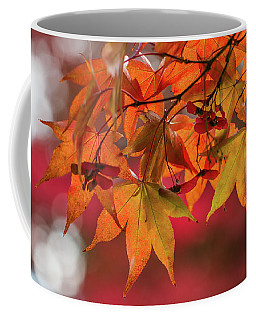 Coffee Mug featuring the photograph Orange Maple Leaves by Clare Bambers