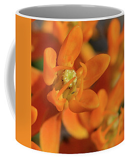 Orange Milkweed Coffee Mug