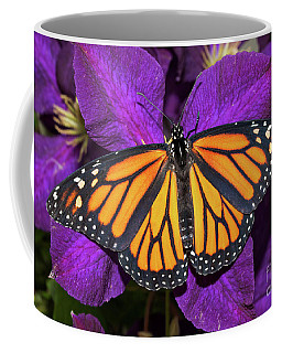 Orange On Purple Coffee Mug