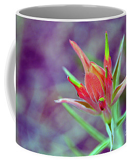 Orange Paintbrush Flower Coffee Mug