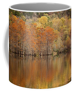 Orange Pool Coffee Mug by Iris Greenwell
