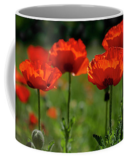 Orange Poppies In The Sunshine Coffee Mug