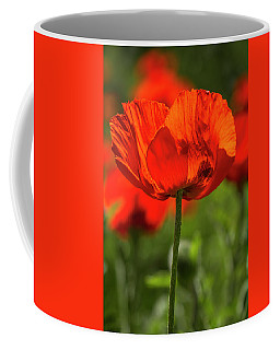 Orange Poppy Beauties Coffee Mug