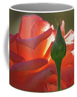 Serenity - Orange Rose And Bud - Photography - Floral Coffee Mug