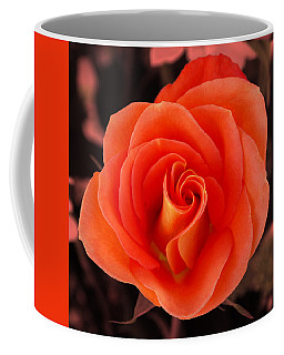 Coffee Mug featuring the photograph Orange Rose by Howard Bagley