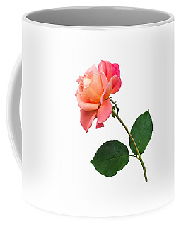 Orange Rose Specimen Coffee Mug