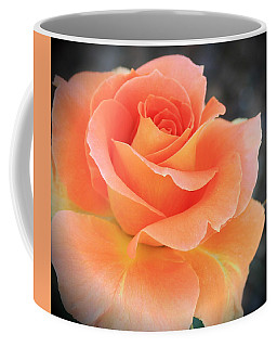 Coffee Mug featuring the photograph Orange Sherbert by Marna Edwards Flavell