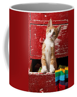 Orange Tabby Kitten In Red Drawer  Coffee Mug