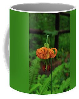 Coffee Mug featuring the photograph Orange Tiger Lily by Tikvah's Hope