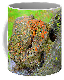 Orange Tree Stump Coffee Mug
