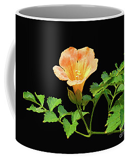 Orange Trumpet Flower Coffee Mug by Susan Lafleur