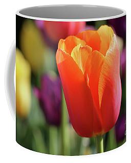 Orange Tulip In Franklin Park Coffee Mug