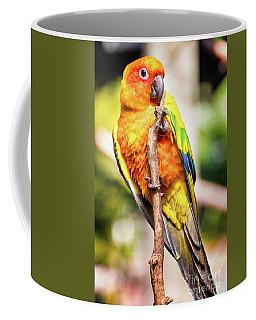 Orange Yellow Parakeet Coffee Mug by Stephanie Hayes