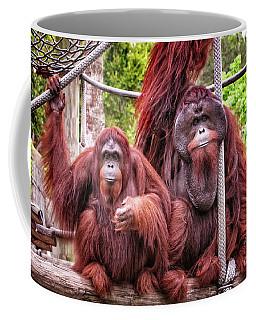Orangutan Couple Coffee Mug by Stephanie Hayes