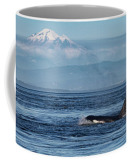 Orca Male With Mt Baker Coffee Mug